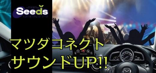 live-concert-388160_1920-720x493